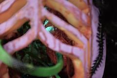 The Telltale Heart (jessrawk) Tags: lighting blue light red orange black green halloween pumpkin carved blood shadows dof purple heart snake ottawa carving illuminated creepy spooky organ pumpkincarving ribs ribcage 365 rib bloody snakes playful millipede organs thump aorta gruesome 305 centipedes cruel telltaleheart pumpkincarvingcontest scutigera drippingblood thetelltaleheart insidethepumpkin bloodyheart threehundredandfive threeohfive notmypumpkin
