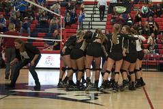 LHS-JHS 111415a - 109 (Bismarck Pro) Tags: school high varsity northdakota bluejays playoffs volleyball legacy jamestown sabers wda november142015