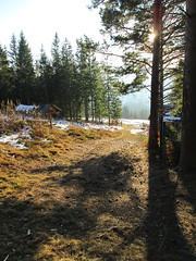 IMG_5452 (piragkov) Tags: travel snow mountains pine outdoors woods hiking weekend rocky ukraine explore rockymountains alpines snowmountains hikings горгани микуличин archypiragkov