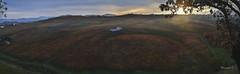 Red Carpet (Davide'70) Tags: sunset italia tramonto novembre campagna pace autunno colori colline abruzzo viraggio silenzio vigneti sansalvo cupello frazioneributtini