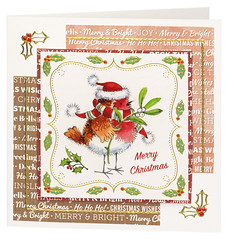 Craft Creations - Charlotte095 (Craft Creations Ltd) Tags: robin greetingcard craftcreations handmade cardmaking cards craft papercraft christmascardideas christmascard christmascardmaking cardmakingideas greetingcardmaking christmas xmas