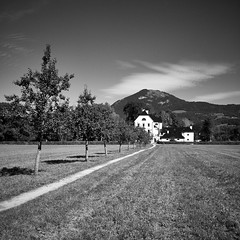 Freisaal (.martinjakab) Tags: austria landschaft nonntal salzburg weg wolken bw blackandwhite castle clouds landscape monochrome path schwarzweiss ngc