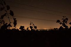 IMG_5923 (billyE1973) Tags: nacht sterne milchstrase langenlois
