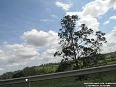 BELAS PAISAGENS (PHOTOGRAPHE PIVA CANTIZANI) Tags: belas paisagens