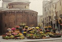 Rotunda Di San Lorenzo, Mantua (Meredith Jacobson Marciano) Tags: mantua mantova italy sanlorenzo rotonda lombardy medieval flowers