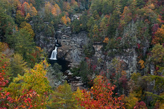 It's beginning to look a lot like Autumn (Ginny Williams Photography) Tags: linville falls nc mountains fall autumn leaves colors colorful trees leaf season waterfall waterfalls gorge rock landscape water flow beautiful northcarolinaphotographer ncfineartphotographer northcarolinafineartphotographer northcarolinaphotographers nikon d7100