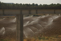 Watering the crop (Let Ideas Compete) Tags: renfe spain train espaa bridge sprinkler water agriculture
