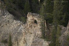"""Natural Bridge in the Grand Canyon of the Yellowstone • <a style=""""font-size:0.8em;"""" href=""""http://www.flickr.com/photos/63501323@N07/30188884344/"""" target=""""_blank"""">View on Flickr</a>"""