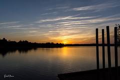 22102016-PBP_6068 (Berns Patrick) Tags: pins landes lac azur foret soleil matin ponton pigne