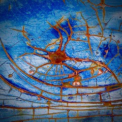 Abstract (StephenReed) Tags: abstract art abstractart metal paint chippedpaint rust craquelure squareformat tentacles blue nikond3300 stephenreed