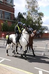 Mounted Police at Portman Road (Ian Press Photography) Tags: ipswich town football club portman road suffolk norwiich city fc 999 police emergency service services match old farm derby championship norfolk horse horses mounted colp london