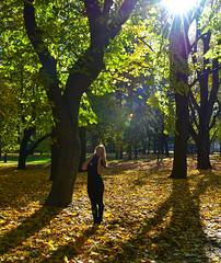 Autumn at the park (free3yourmind) Tags: autumn park kupala minsk belarus trees sun light rays leafs irina