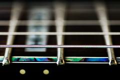 Macro Mondays Edge (Michael J P) Tags: macromondays edge nikon nikond610 nikkor60mmf28macro guitar fretboard strings frets he guitarlove