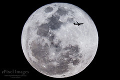 VH-YIM Boeing 737 Perigee Super Moon Brisbane (ePixel Images) Tags: vhyim cn387164119 boeing7378fe virginaustralia silhouette lunartetrad perigeemoon supermoon brisbane auckland virgin boeing flight aircraft travel airline aviation sky night
