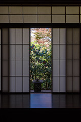 Japan (byzanceblue) Tags: japan kyoto rurikoin window light autumn