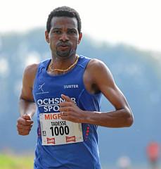 Hallwilerseelauf: Tadesse Abraham ist schon nach wenigen Kilometern alleine in Fuehrung