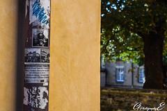 the little story (GreenEyes Photography) Tags: rennes greeneyesphotography bird oiseau batiment city ville vilaine eau water banc bleu couleur noir et blanc sepia love couple story