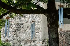 Basilica Rankweil (Maya Lucchitta) Tags: austria basilicarankweil ourdearladymaryvisitation pilgrimagechurch rankweil unsereliebefraumariäheimsuchung basilica church tree windchimes