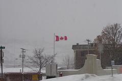 St. John's, Blizzard (Joseph Topping) Tags: newfoundland canada winter