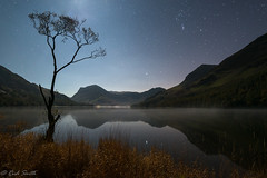 Lone tree @ Buttermere (evorichie101) Tags: buttermere lake district night astro stars reflections lone tree nikon d800 landscape