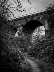 332/366 2016 - Viaduct (fishyfish_arcade) Tags: 20mmf17 gx7 lumix panasonic panasonic20mmf17asphlumixg 366 365 blackwhite blackandwhite bw monochrome mono viaduct bridge path