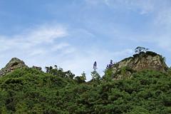 Horizon with Monkshood (Aconitum napellus) (vil.sandi) Tags: monkshood aconitumnapellus eisenhut macchia rocks pyrenen frankreich