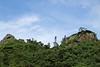 Horizon with Monkshood (Aconitum napellus) (vil.sandi) Tags: monkshood aconitumnapellus eisenhut macchia rocks pyrenäen frankreich