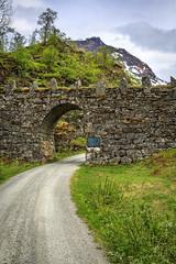 174258_CB_1010 (aud.watson) Tags: europe norway romsdal strada geiranger geirangerfjorden mountains