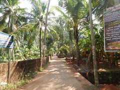 Villages Near Calicut Kerala Photography By CHINMAYA M (21)