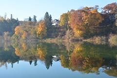 Grenadier Pond (hogtown_blues) Tags: toronto ontario canada highpark grenadierpond fall autumn reflection waterreflection