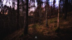 Into the Darkness (Augmented Reality Images (Getty Contributor)) Tags: autumn canon colours fall forest hdr landscape leefilters longexposure nature perthshire scotland sunset trees woodland