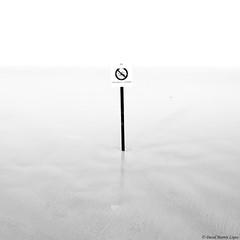 Forbidden bath (David Martn Lpez) Tags: beachofcathedrals playadelascatedrales beach playa blackandwhite blancoynegro minimalist minimalista longexposure largaexposicion davidmartinlopez galicia