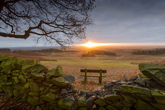 The best seat in Leicestershire (John__Hull) Tags: seat bench sunrise leicester winter bradgate park newtown linford charnwood leicestershire uk view golden leaves nikon d3200 sigma 1020mm vew clouds landscape trees stone wall woods ferns