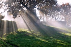 (claudiophoto) Tags: lemarche paesaggidellemarche nebbiemattutine mistymirning fog italy italianhills fall landscapes reggidisole controluce fujix30 fuji