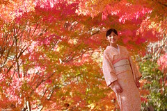 (atacamaki) Tags: xt1 50140 xf f28 rlmoiswr fujifilm jpeg atacamaki women kimono japan season autumn iwaki fukushima