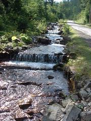 Szinevéri-patak (ossian71) Tags: ukrajna ukraine kárpátalja szinevér kárpátok carpathians vízpart water tájkép landscape természet nature folyó river