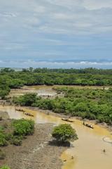 Guide us through () Tags:    nikond5300 nikon   ratargul  swampforest sylhet bangladesh