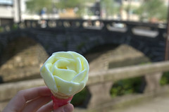 Ice cream in front of Spectacles Bridge