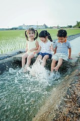 Play With Water - Children ( aikawake) Tags: boy cute nature water girl smile grass kids river children happy three outdoor paddle taiwan happiness spray laugh bloom haha algae littlepeople chickenpox ricohgr taiwanese   littlechild  playwithwater