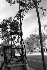 Reading (Crisp-13) Tags: barcelona street boy people white black girl bench reading book spain sitting candid scene
