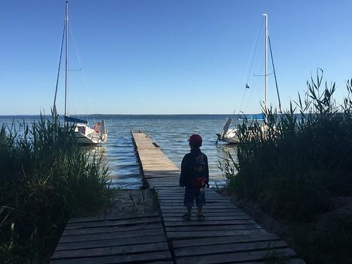 Naroch: Little T watching the lake