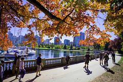 Autumn, Stanley Park Oct, 2015 (GoToVan) Tags: autumn october stanleypark