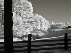 IMG_2592 (Dan Correia) Tags: belchertown infrared shadows fence truck 15fav topv111 topv333 addme500 topv555