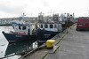 HOWTH FISHING FLEET [BAD BOYZ]--109478