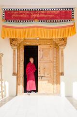 Samstanling Gompa (dominikfranzl) Tags: india la monastery tso leh indien himalayas kloster ladakh pangong nubra khardung