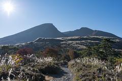 Autumn (RenField - Toel-ul Laputa) Tags: morning autumn sky sun mountain nature japan 35mm landscape nikon wide miyazaki   nikkor          silvergrass   ebino     d800e