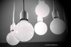 IDEA _ Leandro Uhlmann (Leandro Uhlmann) Tags: brazil luz brasil sopaulo felicidade pb pensar iluminao pensamento lampadas ideia claridade eltrica leandrouhlmann cabosbrancoepreto cabosenergia