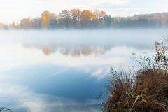 Foggy morning at Burgäschisee (Role Bigler) Tags: autumn lake fall nature water schweiz switzerland see wasser suisse herbst natur burgäschisee