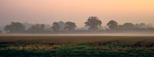 Misty moisty......P1040311.jpg