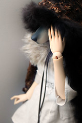 My what big ears you have (Damasquerade) Tags: ball wolf doll artist head bjd rare joint anthro sculpt pavilionk paviwolfk